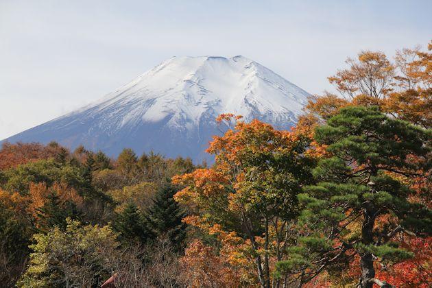 yoshimura6b.jpg